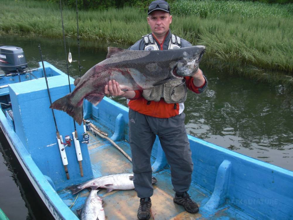 Pêche au Kamtchatka