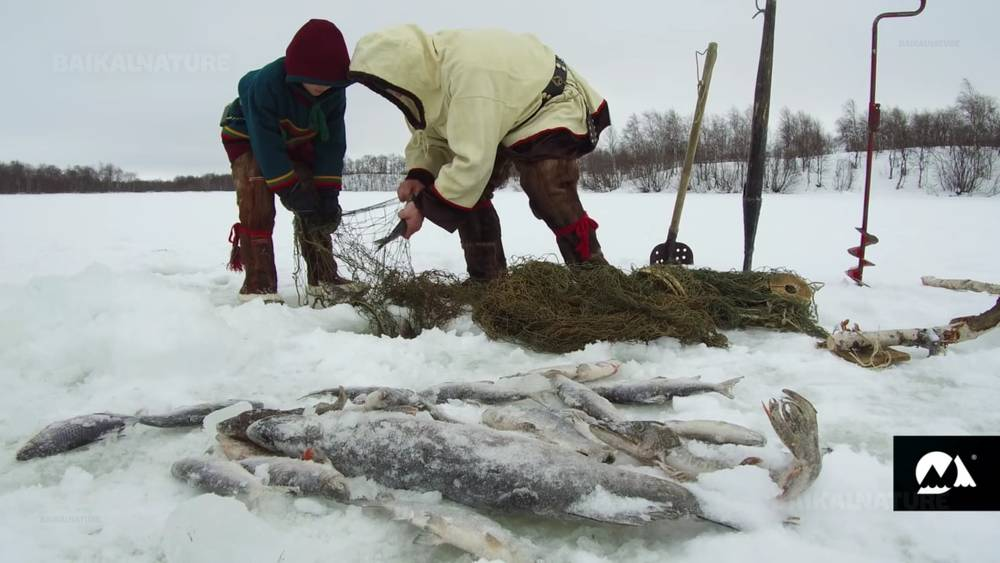 Nenets Fisherman and his Son