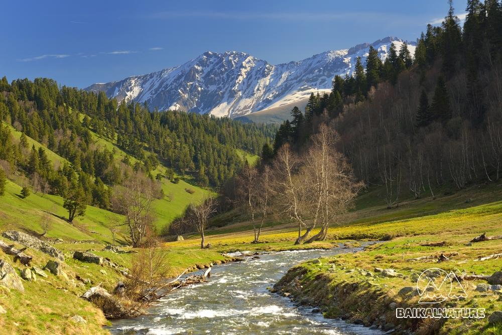 Кавказские горы весной.